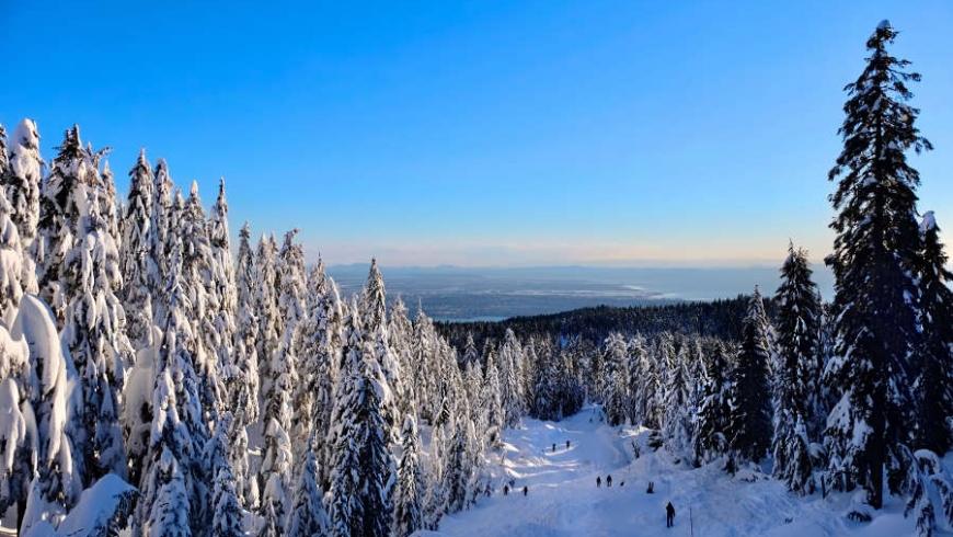 4 Tips on Avoiding Skiing Injuries